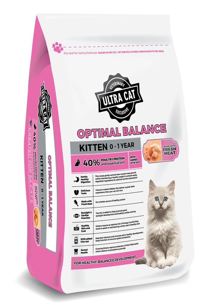 Optimal Balance – Kitten